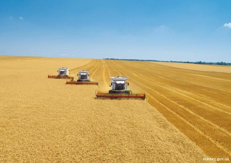 Аграрная реформа- наиболее болезненная для украинцев