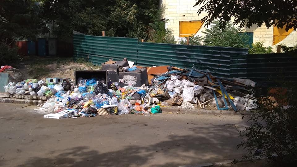 Образовалась огромная свалка: в Вознесеновском районе Запорожья уже месяц не вывозят мусор (фото)