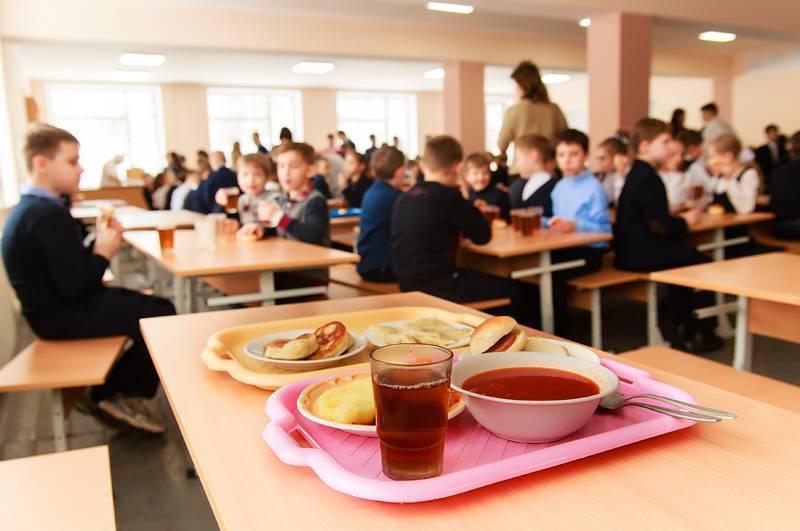 Міська рада Запоріжжя ще раз розгляне питання про дитяче харчування у школах