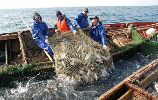 Закони не писані: браконьєри Череповського продовжують винищувати Азовське море