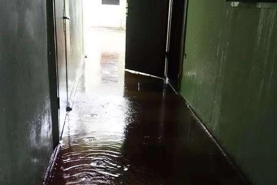 Без даху: в житловому будинку Запоріжжя під час дощу – справжній потоп – відео