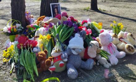 """У трагедії, що трапилася в центральному парку Запоріжжя знайшли """"винного"""""""