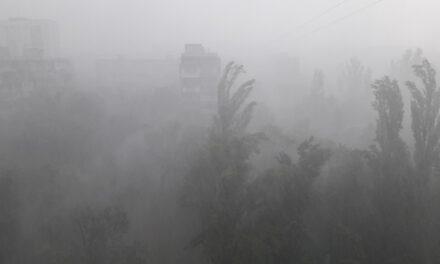Мешканці Запоріжжя зафіксували момент падіння дерева  під час негоди – відео