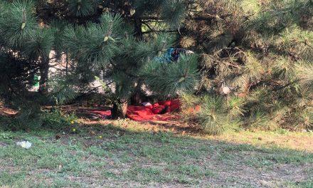 На газоні одного з центральних проспектів у Запоріжжі поселилися безпритульні – фото