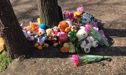Смерть дитини в Центральному парку Запоріжжя: поліція вручила підозру Олегу Комаренку