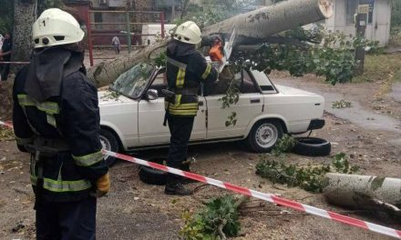 Рятувальники у Запоріжжі розказали про наслідки негоди, що вирувала у вихідні
