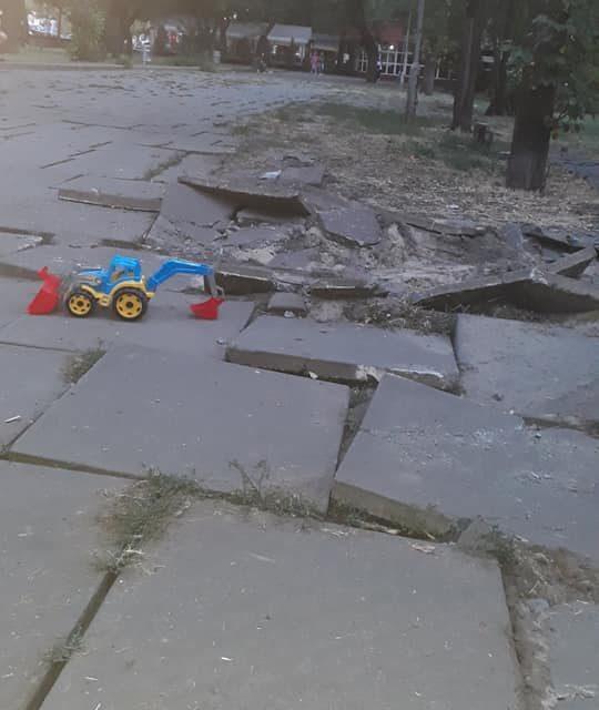 У Запоріжжі бізнесмени руйнують покриття в парку та рубають дерева