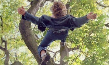 У Запоріжжі маленька дівчинка отримала важку травму голови впавши з дерева