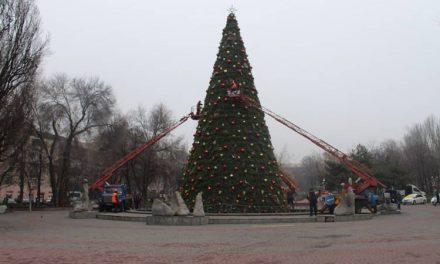Мешканці Запоріжжя збирають підписи, щоб відмовити владу встановлювати новорічну ялинку в центрі міста